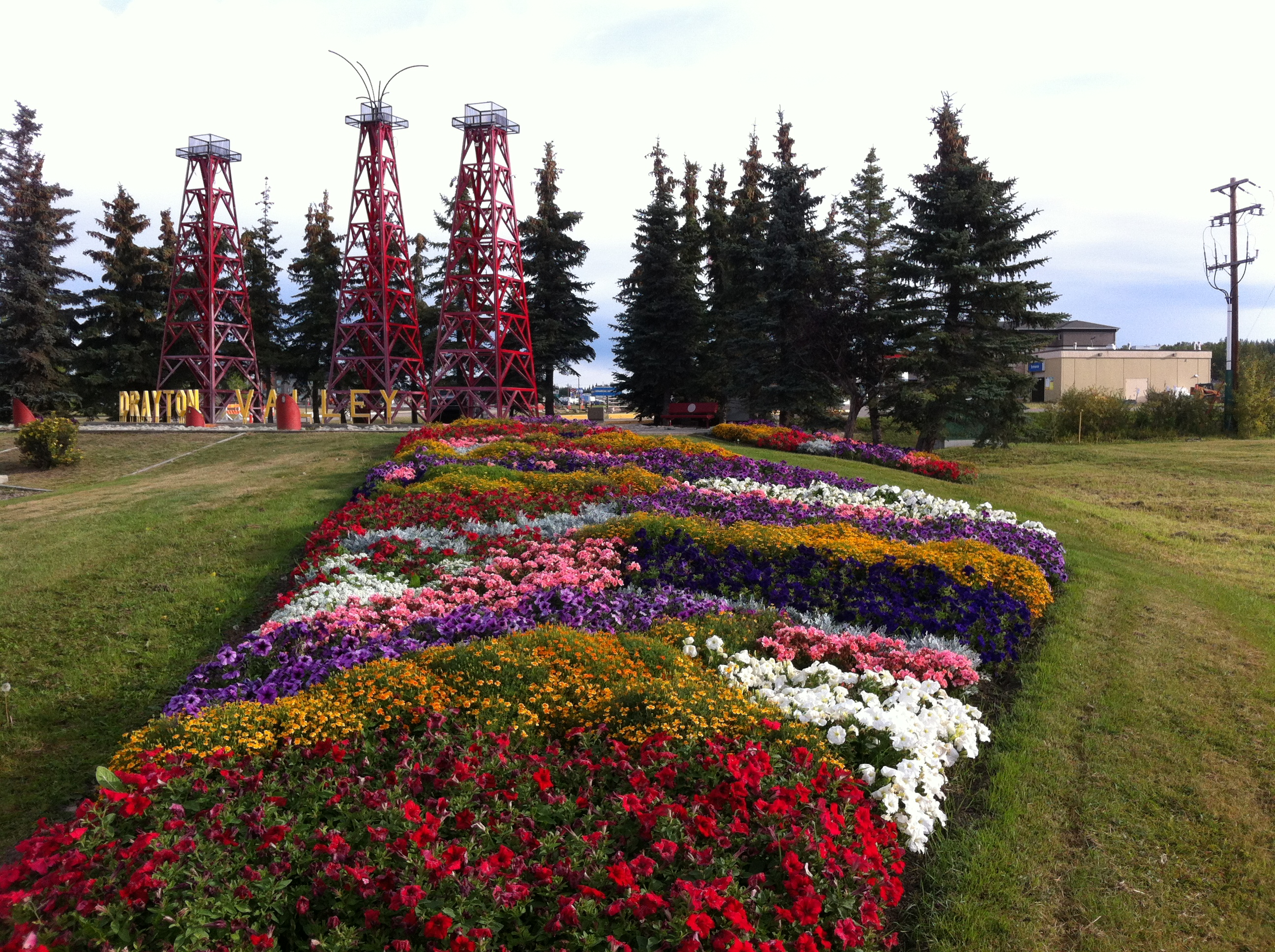 Drayton Valley (AB) Canada  city photo : Drayton Valley Communities in Bloom Communities in Bloom