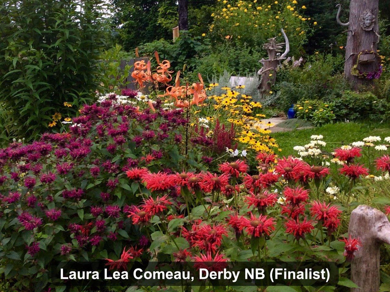 Finalist - Laura Lea Comeau, Derby NB