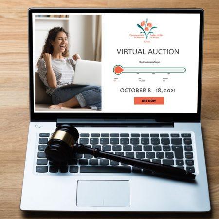 2021 Virtual Auction Photo for invite