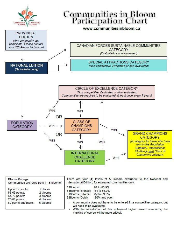 CiB Participation Chart EN