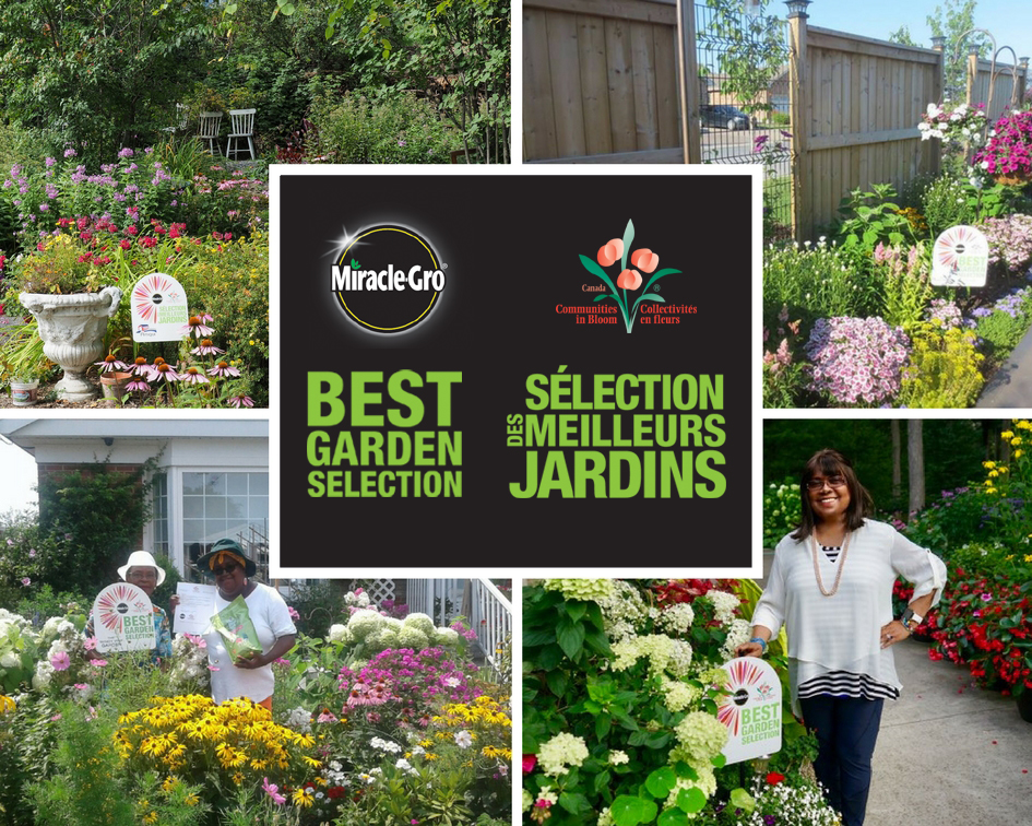 Best Garden Selection - Social Media