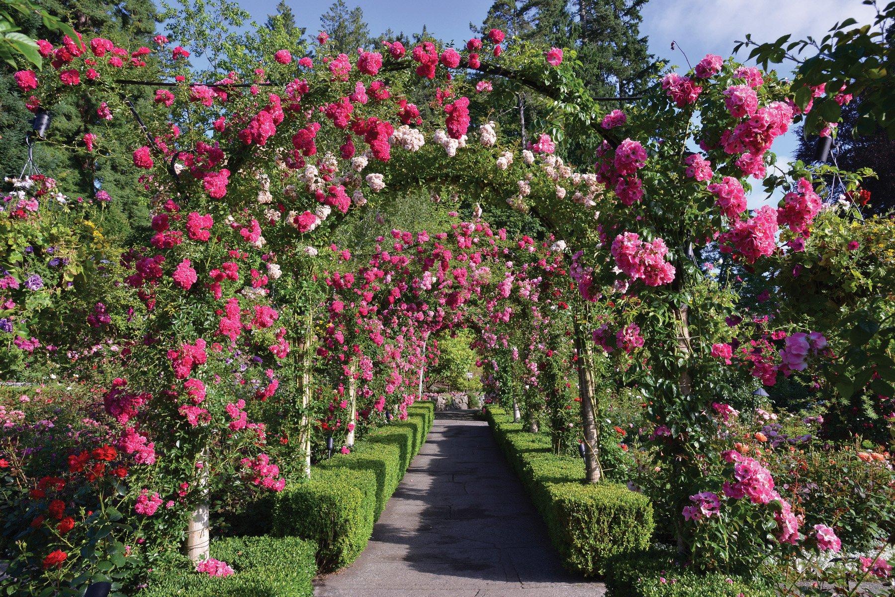 The Butchart Gardens Victoria British Columbia