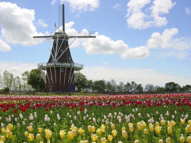 holland usa
